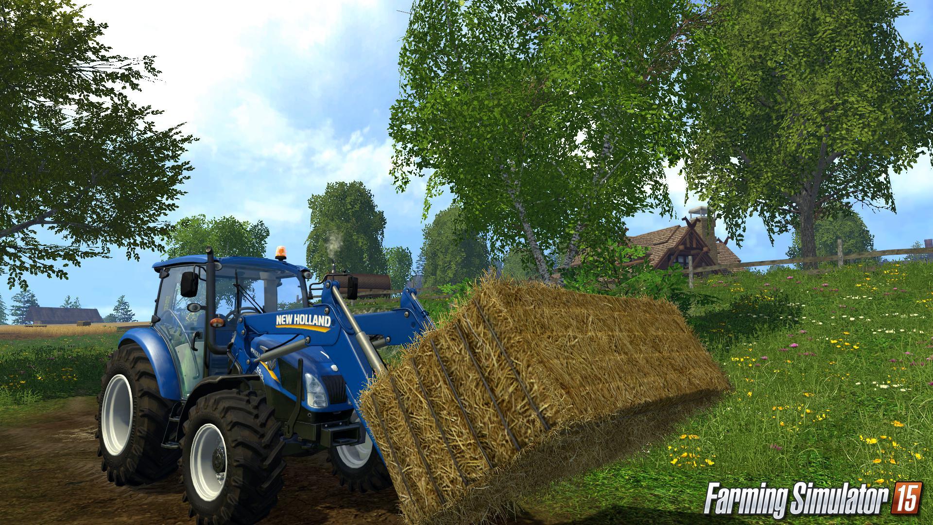 Image8 de Farming Simulator 2015