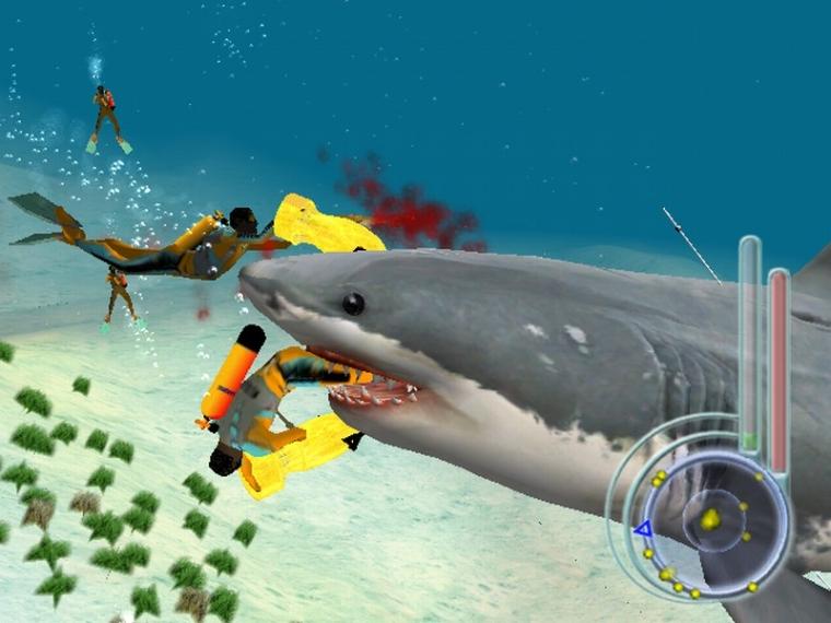 Image1 de Jaws : Les Dents de la Mer