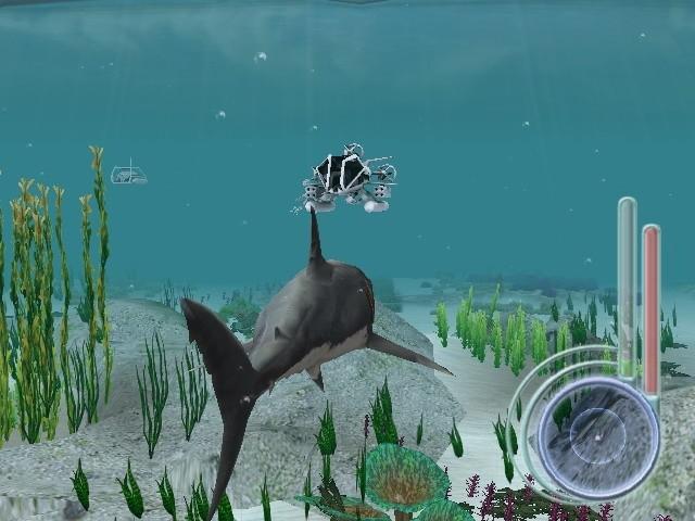 Image58 de Jaws : Les Dents de la Mer