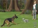 12 images de Les Sims 2 : Animaux & Cie
