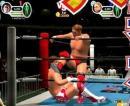 13 images de All Star Professional Wrestling 3