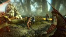 The Witcher 2: Assassins of Kings - 47