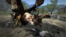 Dragon's Dogma - 10
