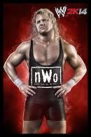 WWE 2K14 - 20