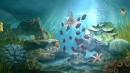11 images de Aqua Vita