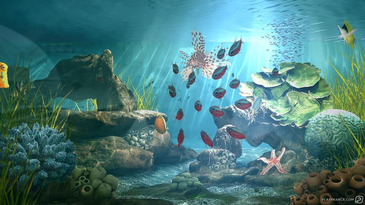 Image11 de Aqua Vita