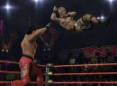 TNA iMPACT - 17