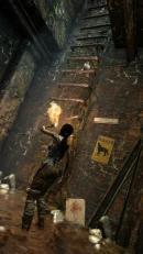 Tomb Raider - 38