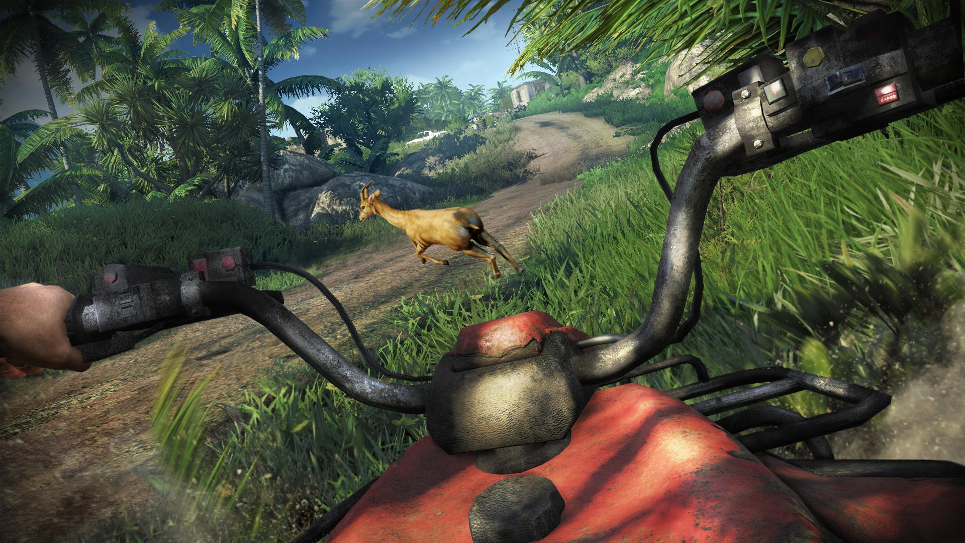 Image37 de Far Cry 3