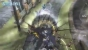 [Videos] Malicious Rebirth : un nouveau boss en vid�o
