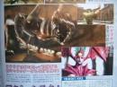 [Images] Ninja Gaiden Sigma nouveaux scans - 7