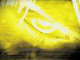 Trailer TGS 2010